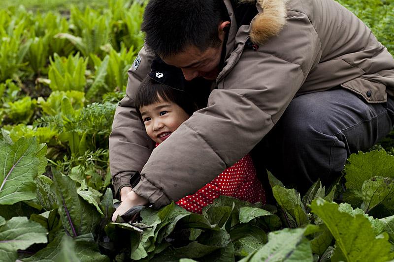 Zester_Daily_China_Organic_Farm_1