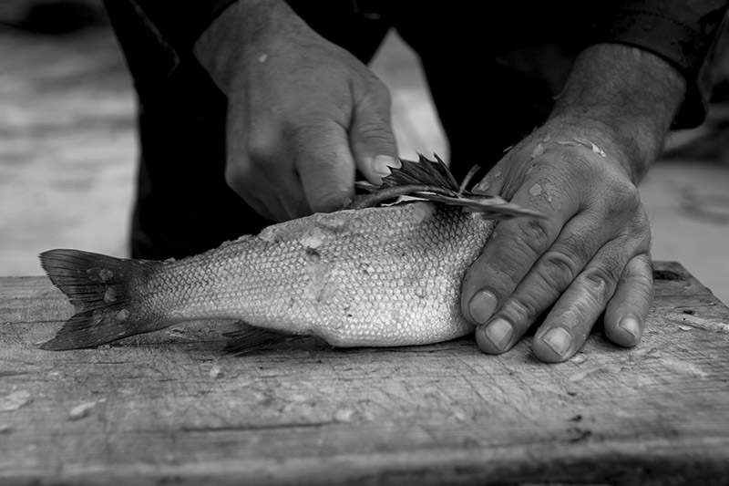 David-hagerman-filleting-levrek-fish-persembe-turkey-nov-2012