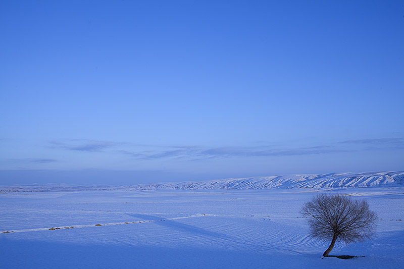 Blue snow_Turkey_Hagerman