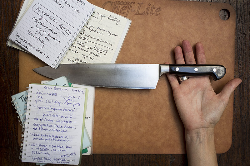 David-hagerman-knife_wrist_notebooks_05.21.14