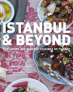 Istanbulandbeyond_Cover_Final