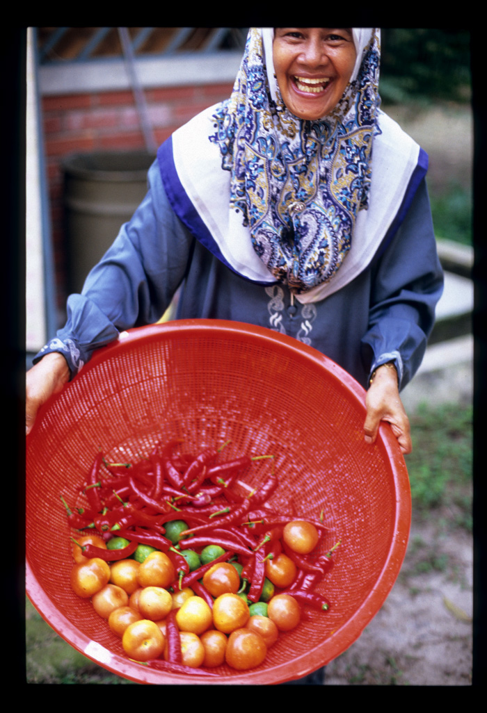 Kenduri_tomatoes_chilies_and_a_smil