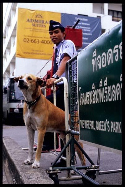 Bkk_am_on_guard