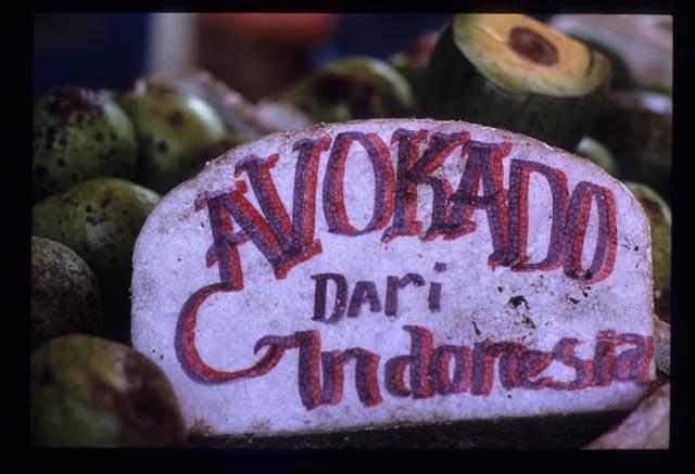 Avocado_dari_indonesia