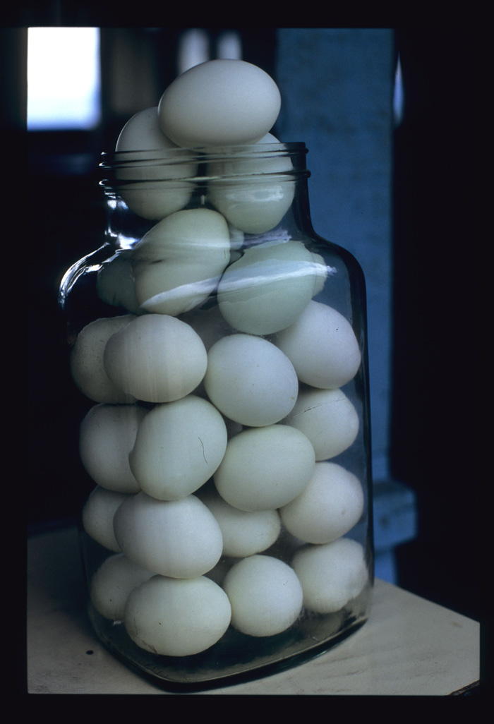 Bandrek_egg_bottle