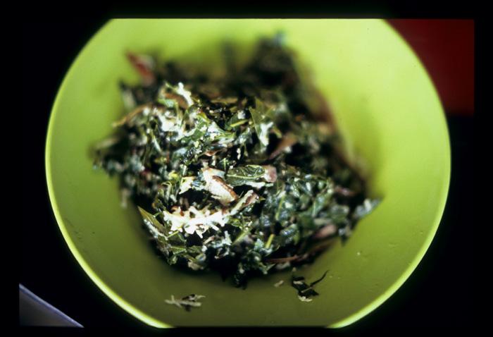 Batak_babi_leaves