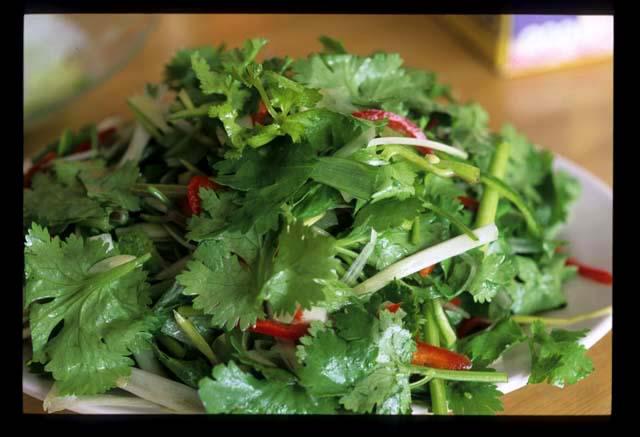 Dongbei_cilantro_salad