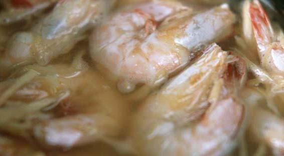 Innard_beauty_shrimp
