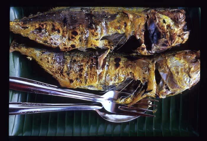 Pak_din_grilled_fish_close