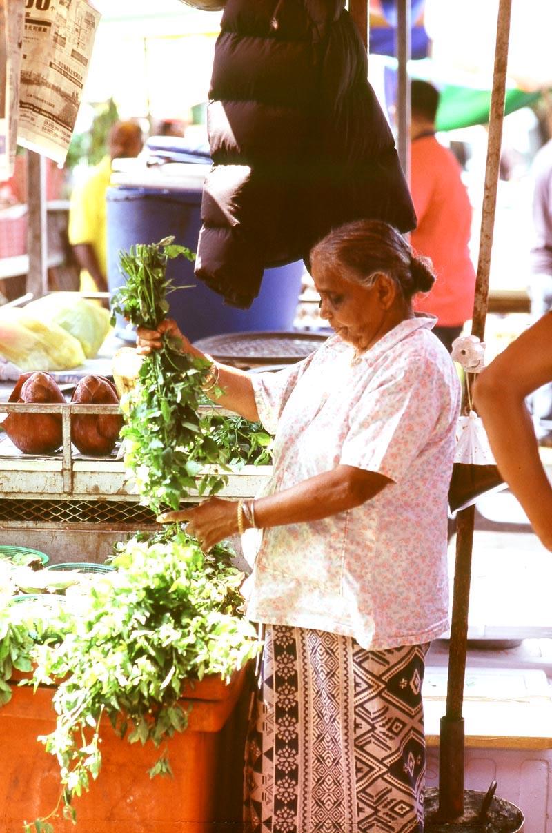 Pasar_sentul_curry_leaves