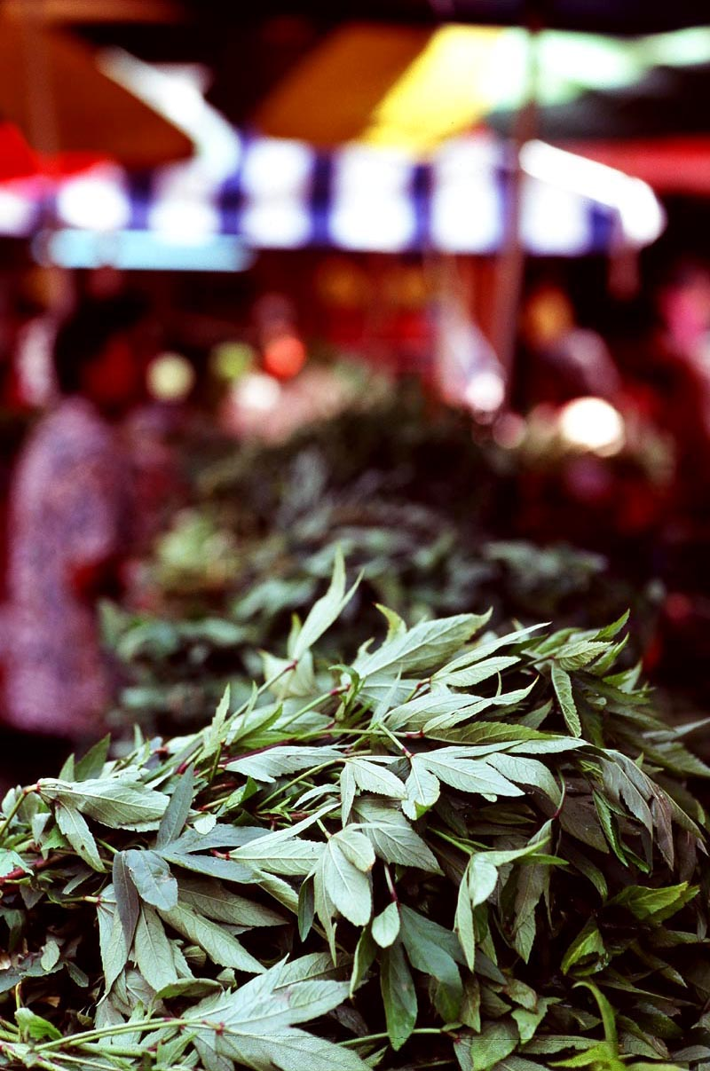 Pasar_sentul_leaves