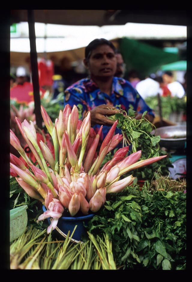 Pudu_mkt_ginger_flowers