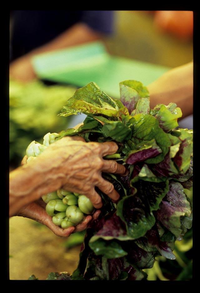 Pudu_mkt_lettuce_handover