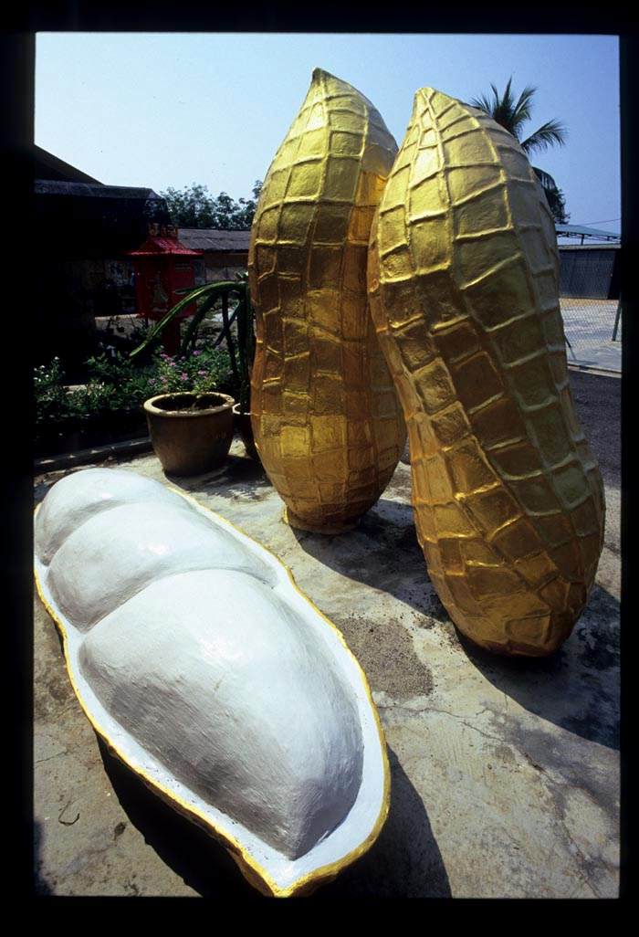 Raub_big_gold_peanut_sideview
