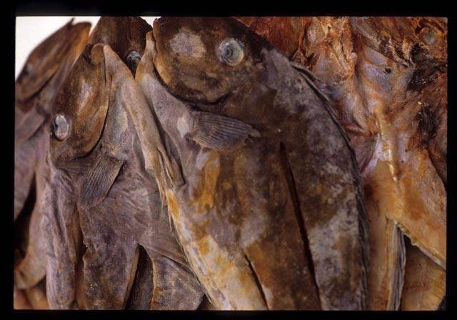 Tamu_kinarut_dry_fish