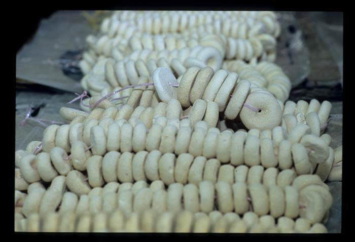 Tamu_yeast_beads