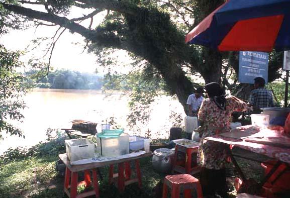 Temerloh_river_scene