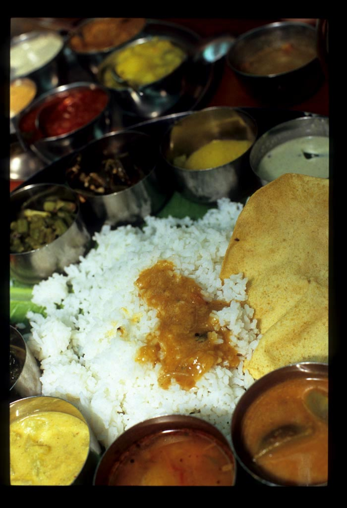Woodlands_thali_close